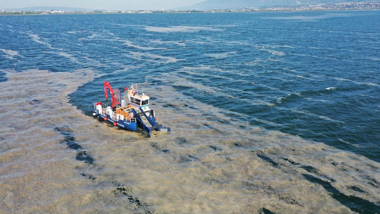 100 ton deniz salyası temizlendi