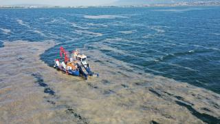 İzmit'te 100 ton deniz salyası temizlendi