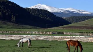 Kars'ta mayısta etkili olan kar ve soğuk hava kışı aratmadı