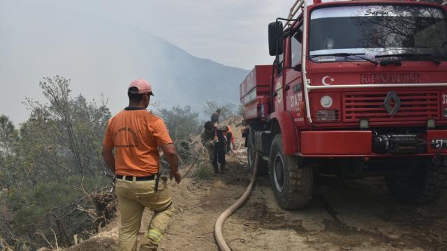 Sinopta çıkan orman yangını kontrol altına alındı