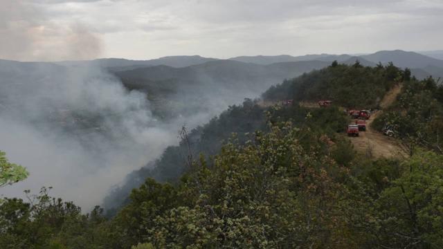 Sinopta orman yangını: Müdahale sürüyor