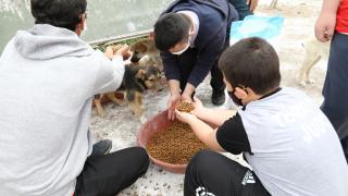 Ankara'da engelli sporcular, harçlıklarıyla aldıkları mamalarla sokak hayvanlarını besledi