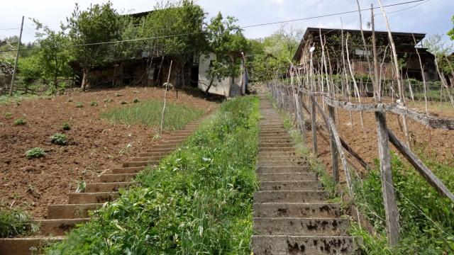 Küs komşular aynı yere 1 metre arayla 2 merdiven yaptı