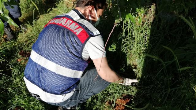 Denizlide tarlada çalışan husumetlisini tüfekle yaralayan kişi yakalandı
