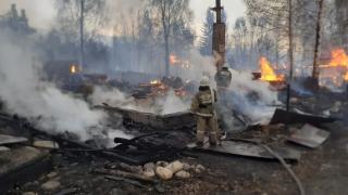 Kazakistan'da ormanda çıkan yangın kente sıçradı