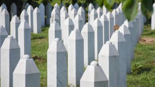 Srebrenitsa annelerinden uluslararası topluma çağrı