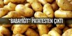 """""""Babayiğit"""" Patatesten Çıktı"""