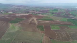 Çukurova'da yağışlar azalıyor, çiftçi iklimle mücadele ediyor