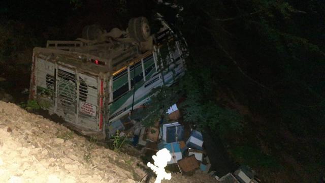 Arı kovanı yüklü kamyon uçuruma devrildi: 3 yaralı