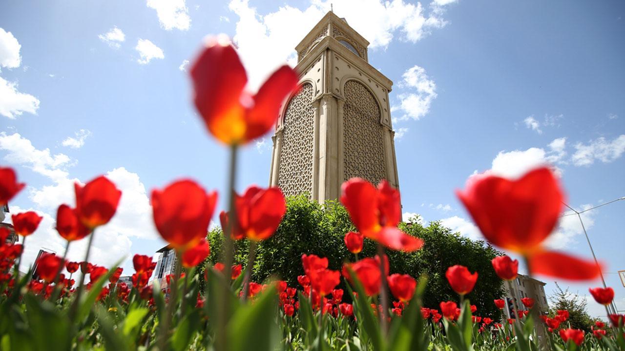 Erzurum bahar renklerine büründü