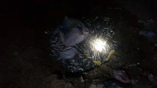 Kaçak avlanan 300 kilo inci kefali imha edildi