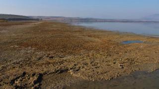 Marmara Gölü'nde usulsüz tarıma 1 milyon lira ceza