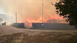 Afyonkarahisar'da biyokütle enerji santralinde yangın
