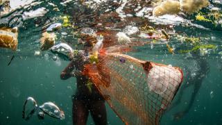 Deniz kirliliği önce balıkları vuruyor