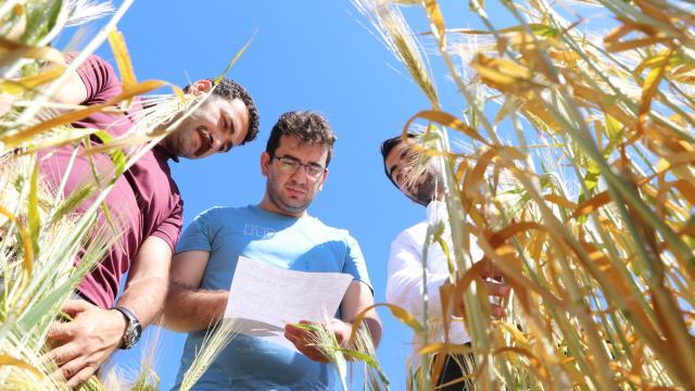 Tarım ve Orman Bakanlığı Güneydoğudaki kuraklığın boyutunu uzman ekiplerle tespit ediyor
