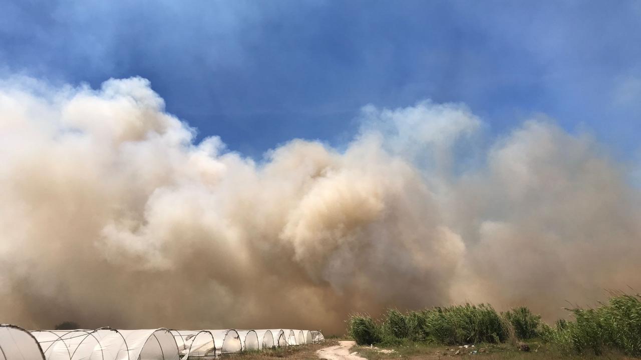 Yangına çok sayıda ekip ve 2 yangın söndürme helikopteriyle müdahale edildi.