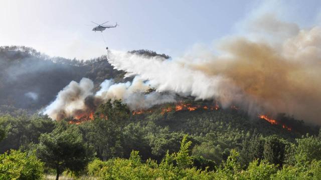 Antalyadaki orman yangınlarında 80 dekar kül oldu