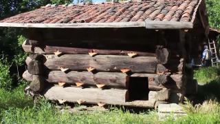 150 yıllık oda tipi çatma kovanda bal üretiyorlar