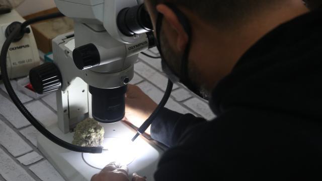 Piri Reisin ismi Antarktikada keşfedilen liken türünde yaşatılacak