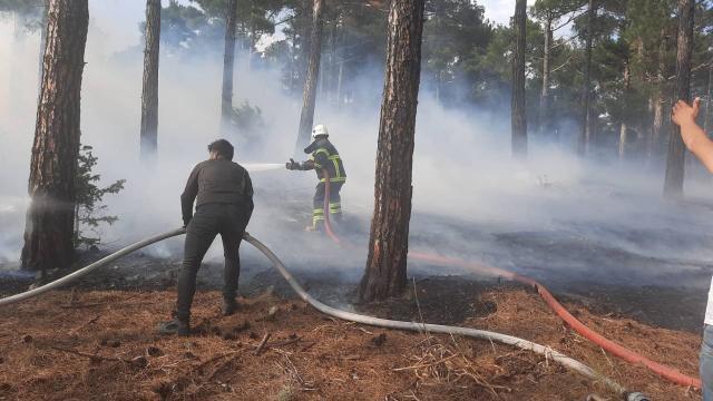 Fekedeki orman yangınına müdahale sürüyor