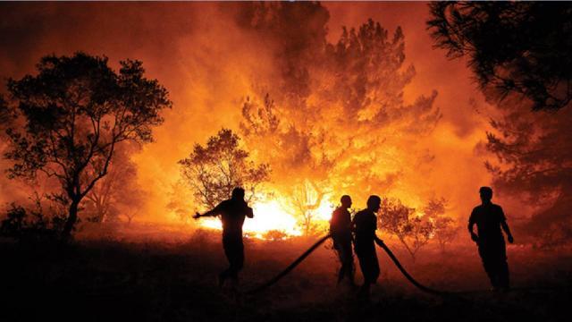 Orman yangınları en çok pazar günleri çıkıyor