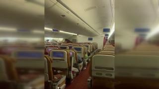 Hindistan'dan ABD'ye giden uçakta yarasa paniği