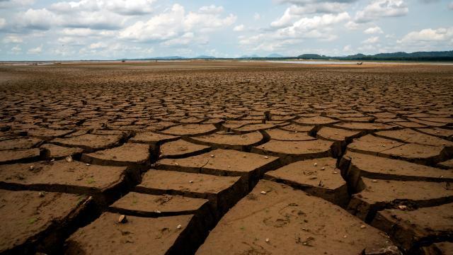 Ülke genelinde ilkbahar kuraklığı etkili oldu