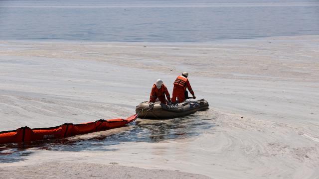 Caddebostan Sahilinde müsilaj temizliğine başlandı