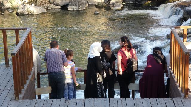 Gazi ve şehit aileleri inci kefali göçünü izledi