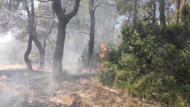 Osmaniyede ormanlık alanda yangın