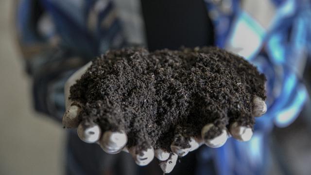 Bodrumunda solucan gübresi üretiyor