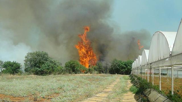 Antalyada çıkan yangınlar kontrol altında