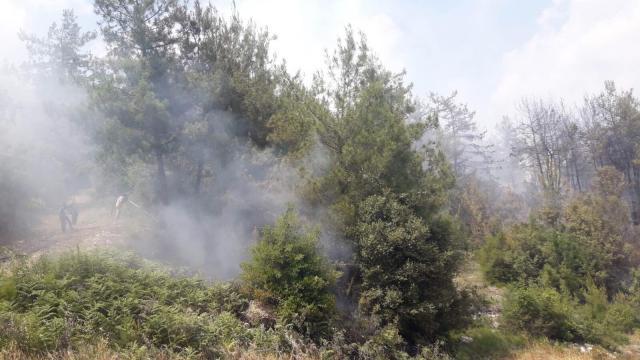 Osmaniyede tarlada çıkan ve ormanlık alana sıçrayan yangın kontrol altına alındı