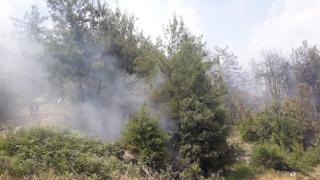 Osmaniye'de tarlada çıkan ve ormanlık alana sıçrayan yangın kontrol altına alındı