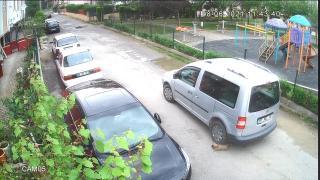 Kocaeli'de yavru köpeği ezen sürücüye ceza