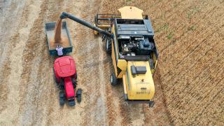 Tahıl üretimi azalacak, meyve üretimi artacak