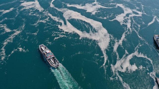 Marmara Denizinden 5 günde 1700 metreküp müsilaj temizlendi