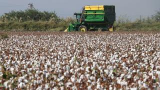 Bakan Pakdemirli'den çiftçiye destek müjdesi