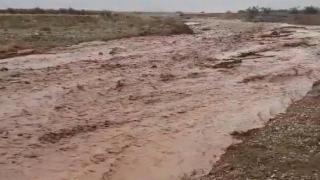 Tarım arazileri zarar gördü