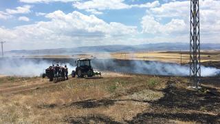 Tunceli'de 10 dönüm ekili alan küle döndü
