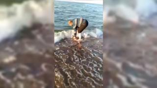Gölde bulduğu yunus yavrusunu kucağında denize taşıdı