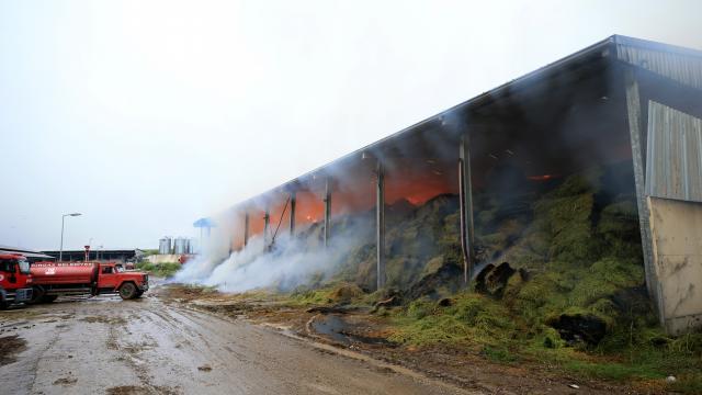 Kırklarelinde hayvan çiftliğinde yangın