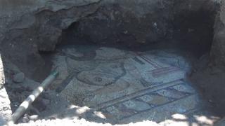 Gaziantep'te bulunan mozaikler tarihe ışık tutuyor