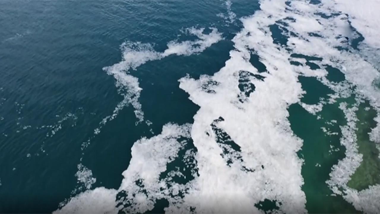 Çanakkale kıyıları müsilajla kaplandı