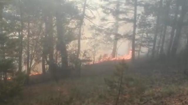 Karsta örtü yangını: Ekiplerin müdahalesi sürüyor