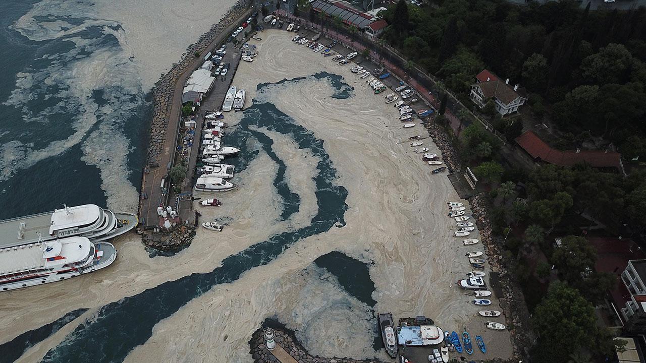 İzmir Körfezi'ni yeniden müsilaj kapladı