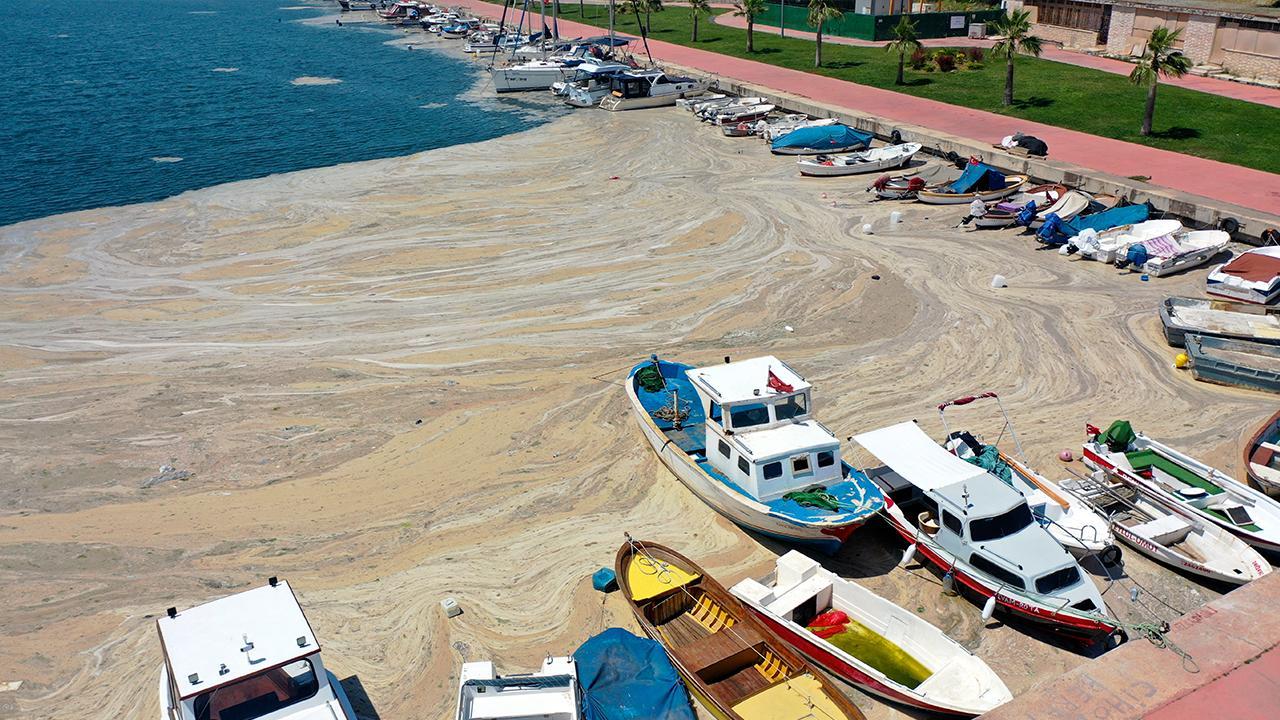 Müsilaja karşı Marmara'ya 'oksijen' takviyesi