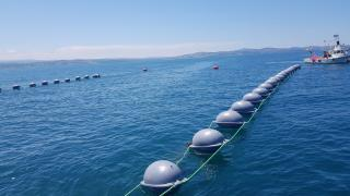 Karadeniz'de azalan midye popülasyonunun artırılması için Sinop'ta üretim tesisi kuruldu
