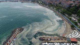 Tekirdağ kıyılarında müsilaj yoğunluğu arttı