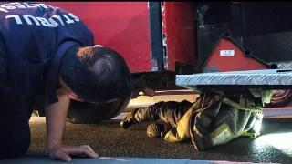 İtfaiyecilerin 1 saatlik kedi kurtarma operasyonu